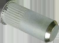 RSgr-гайка клепальная закрытая рифленая c уменьшенной потайной головкой